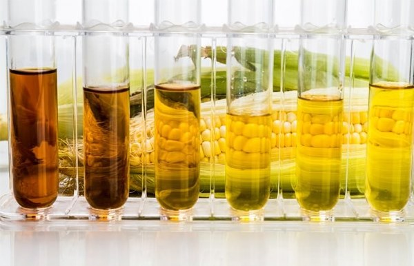 Description: India: National Biofuels Policy 2018 Unveiled